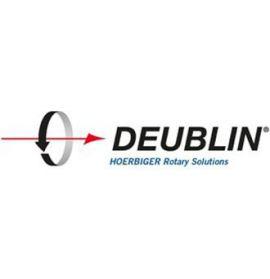 DEUBLIN TẠI VIỆT NAM